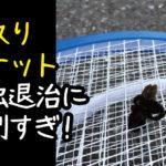 【うるさい蚊対策】蚊取りラケットが強力すぎてハチを倒せるレベルだった!虫嫌い、ハチ対策にもおすすめ!