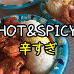 【危険】ジョバンニの辛いガーリックシュリンプは辛すぎる!おすすめは絶対普通の味だよ。【ハワイ】