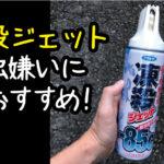 【殺虫剤】虫苦手なら凍殺ジェットが絶対おすすめ!安全で使い易い!