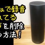 【Alexa】自分の話しかけた声の録音を再生して確認する方法。【amazon echo】